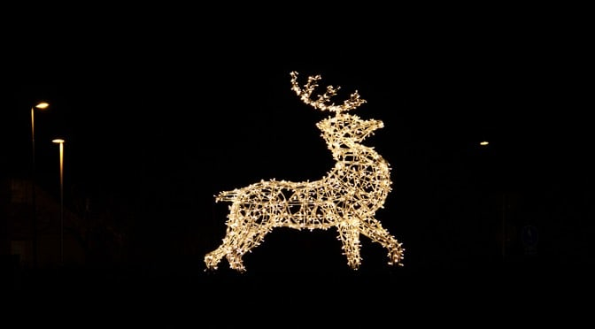 Rudolph in lights