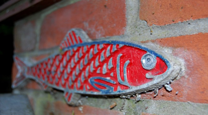 Red fish on a wall