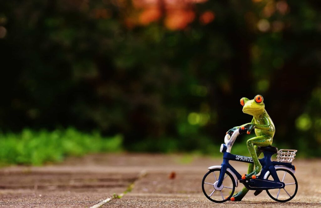 A frog keeping pace on a bike