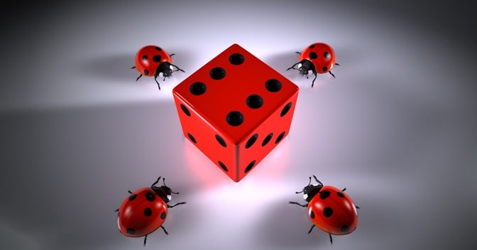 Ladybirds surrounding a dice with the number 6 displayed