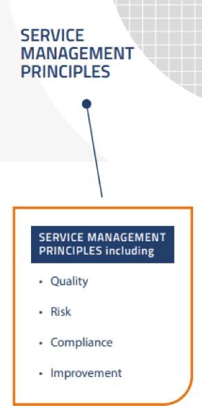 Figure 6. The SM Principles of VeriSM